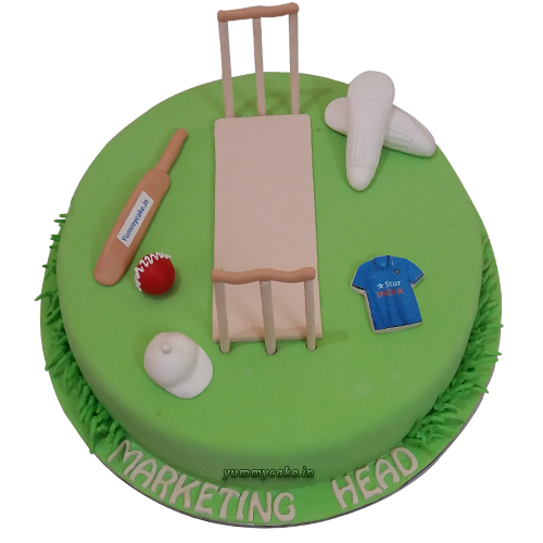 Cricket cake-online cake delivery in faridabad